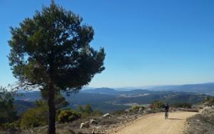 Ruta guiada mountain biking por la Sierra de Mariola
